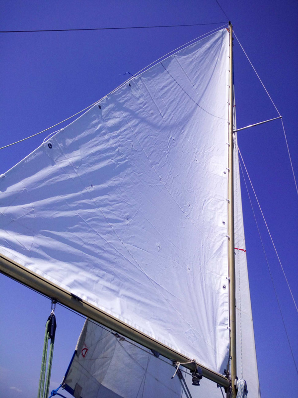 Voile de safari